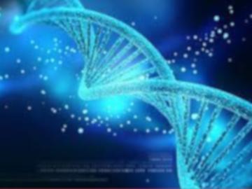 Riscrivere il DNA